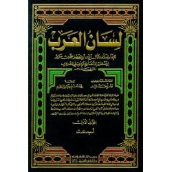 """Le dictionnaire encyclopédique de la langue arabe """"Lissânu-l-'arab"""" - لسان العرب v1-10..."""