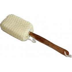 Horsehair back brush and wooden handle