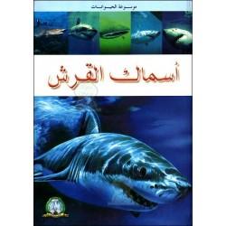 موسوعة الحيوانات - أسماك القرش