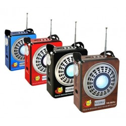 Lecteur MP3 multifonctions avec Radio, Torche et Carte Micro-SD de 8 Go préchargée avec...