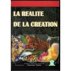 The reality of creation