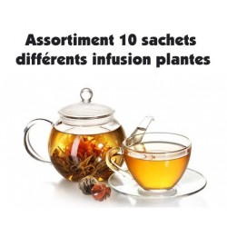 Assortment of 10 different tea and plant infusion sachets