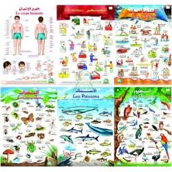 Pack de 18 grands posters bilingues arabe - français