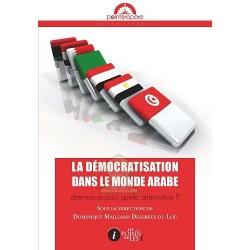 La démocratisation dans le monde arabe : alternance pour quelle alternative ?