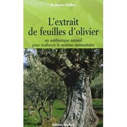 L'extrait de feuilles d'olivier Pour renforcer le système immunitaire